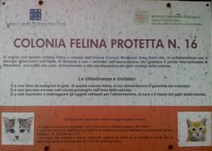Cartello colonia felina