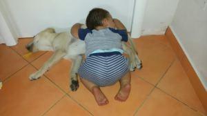 Andrea Zanichelli - cane Disel 3381581263