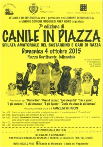 Canile in Piazza 2015