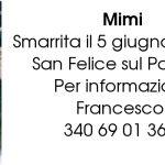 Mimi – SMARRITA – San Felice sul Panaro