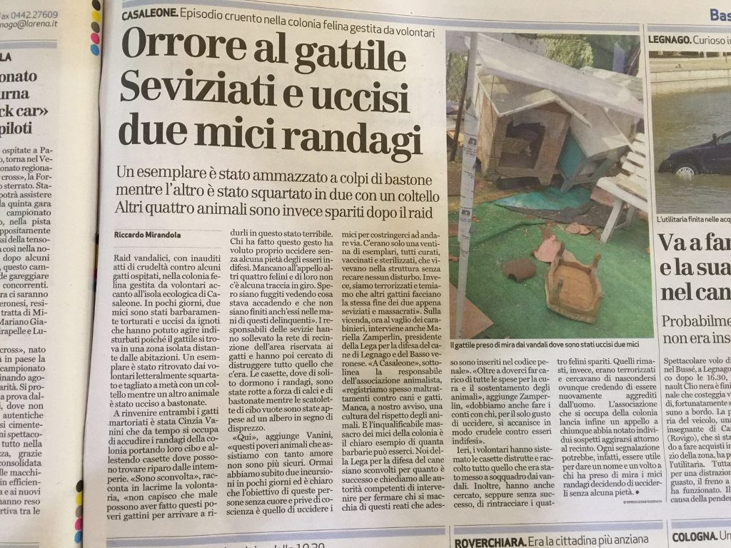Orrore a Casaleone