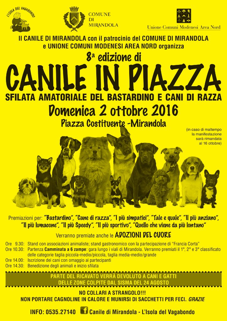 Canile in Piazza 2016