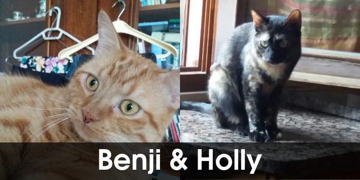 Benji e Holly