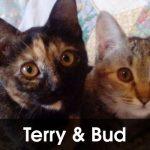 Terry & Bud