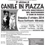 6° EDIZIONE CANILE IN PIAZZA 05/10/2014
