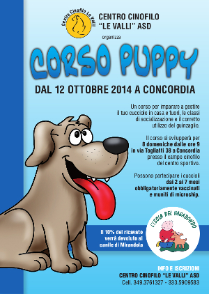 Corso Puppy 2014