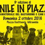 Ottava edizione Canile in Piazza Domenica 2 Ottobre a Mirandola