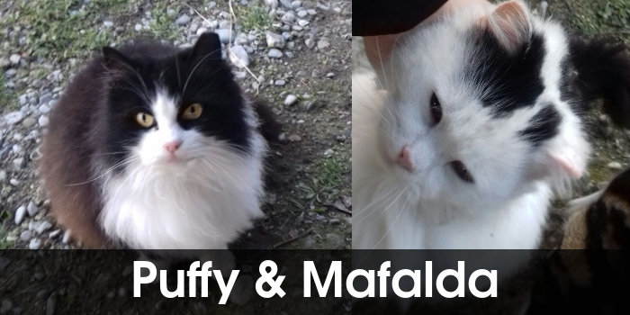 Puffy e Mafalda